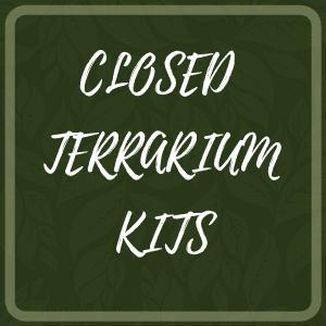 Closed Terrarium Kits